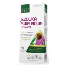 JEŻÓWKA PURPUROWA - echinacea